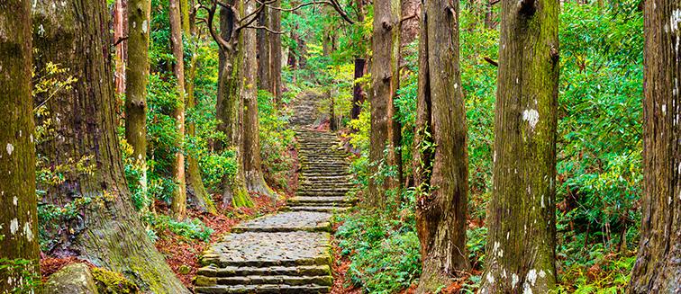 Chemin de Kumano